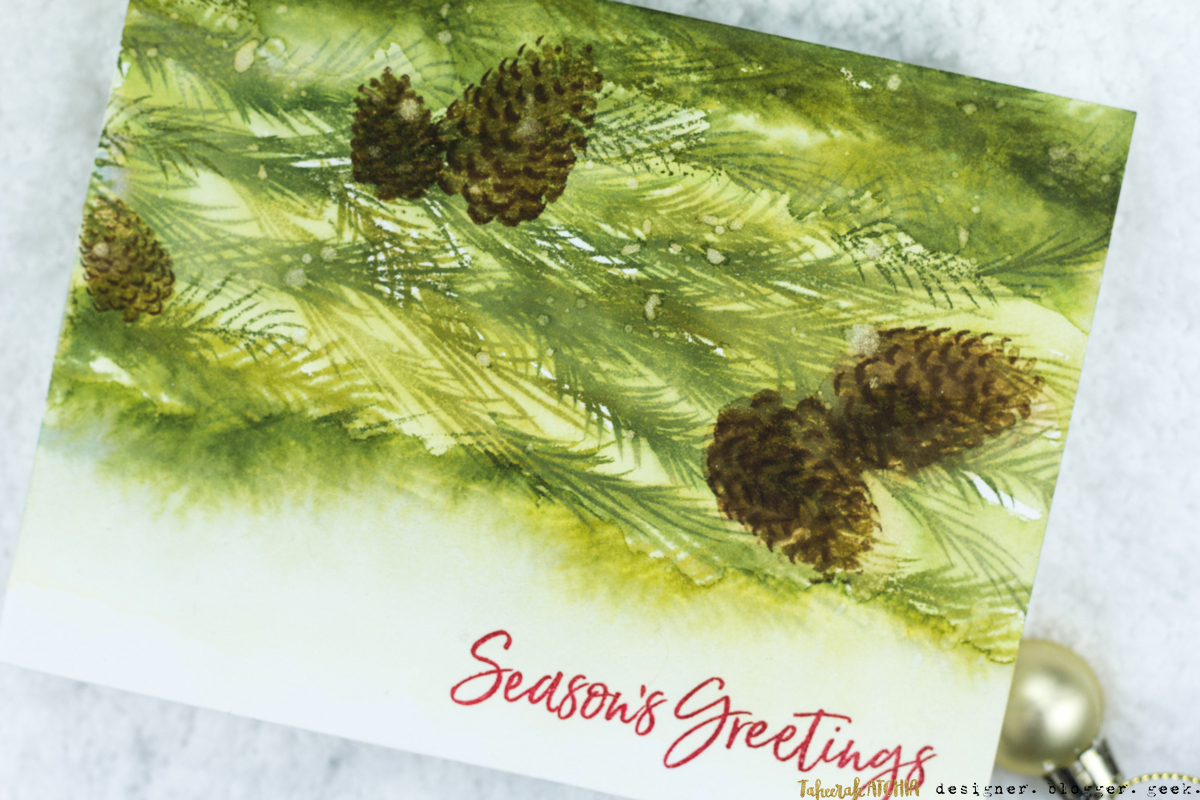 Pine Cones Season's Greetings Christmas Card by Taheerah Atchia