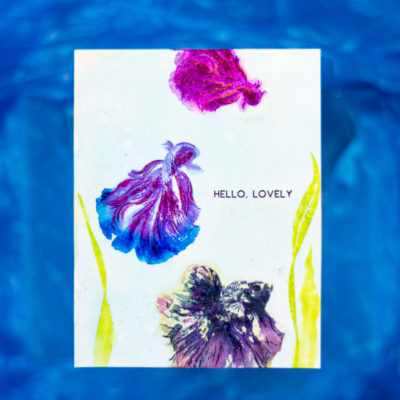 Hello, Lovely Siamese Fighting Betta Fish Card by Taheerah Atchia